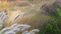 oudolf private garden by piet oudolf, via Flickr