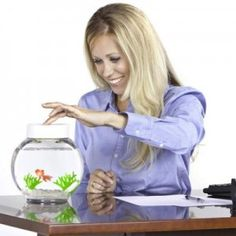 Aquarium magique