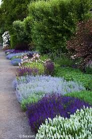 Image result for cool perennial borders