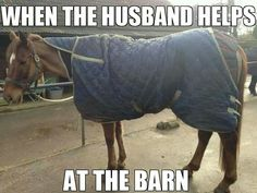 When the husband helps at the barn...