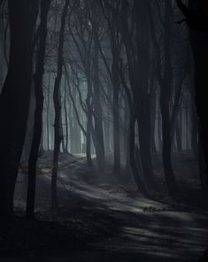 (open horror rp) (Be whoever you want to be) (Also can someone rp with more than one sentence)  I woke up in the middle of nowhere and as I look around I begin to realise that I'm stuck in a forest. But something was wrong and I had a bad feeling about this place. That's when I heard a rustling from over to my right and a something was letting out a growl. I scramble up off the ground and start running to escape whatever was there.