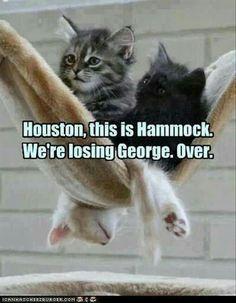 Houston we have a problem