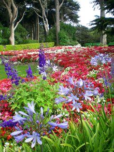 Botanical Gardens San Francisco