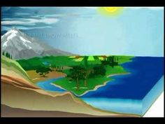 An animation depicting how the water cycle works Student Teaching, Teaching Science, Science For Kids, Earth Science, Life Science, Activities For Kids, Teaching Weather, 5th Grade Science, Science Classroom