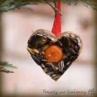 Zimní tvoření s dětmi: krmení pro ptáčky