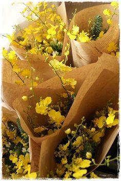 http://ameblo.jp/flower-note/entry-11742829576.html 【若干名募集です】Flower note at home(自宅用花束)|Flower note の 花日記