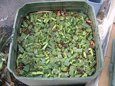 Sensibilización sobre la Gestión de Residuos Orgánicos y Formación sobre el Proceso deCompostaje