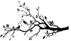 Decorative Birds on a Branch Silhouette  Vinyl by VillageVinePress, $29.95