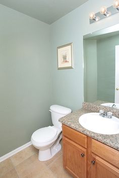 My Guest bath...Just painted with Sherwin Williams