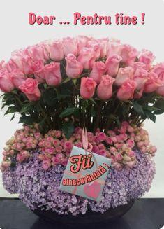 Cabbage, Religion, Floral Wreath, Wreaths, Vegetables, Floral Crown, Door Wreaths, Cabbages, Vegetable Recipes