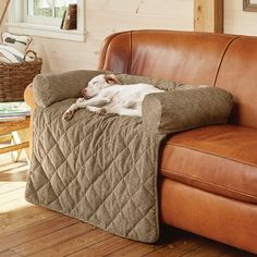 This ingenious bolstered couch protector doubles as a soft indulgent bed for your dog orvis bolster bed, sofa covers / grip tight furniture protector Couch Protector, Dog Couch, Dog Pillows, Diy Dog Bed, Cool Dog Beds, Dog Furniture, Furniture Stores, Office Furniture, Dog Rooms