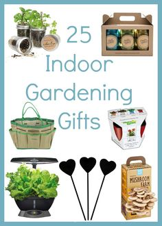 Best Indoor Gardening Gifts
