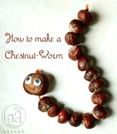 fall craft tutorial: make a chestnut worm! There are tons of these littering the ground in our neighborhood, maybe Alice would like this.