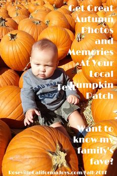 Enjoy autumn activities and events and fun things to do in the Roseville area - from pumpkin smiles to turkey trot to parades to gingerbread houses and more! Roseville California, Local Ads, Gingerbread Houses, Autumn Activities, Fall Photos, Happy Fall, Fun Things, Pumpkin Patches, Turkey