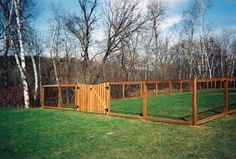 dog fencing - Google Search