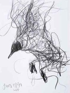 Jason Gathorne-Hardy, Black-Headed Gull Hanging on the Wing, Snape, 2009, graphite on paper