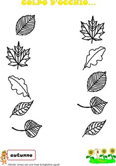 Foglie Autumn Activities, Preschool Activities, Nursing Printables, Two Years Old Activities, Kids Study, Autumn Crafts, Fall Is Here, Hand Embroidery Designs, Pre School