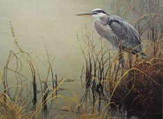 All Things Bright and Beautiful: Robert Bateman - Great Blue Heron,