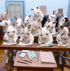 Aunt Margaret's taxidermy display at her home is based on the Victorian British taxidermist Walter Potter's  makes eccentric creations pictured here.