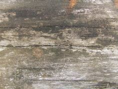 200+ Free High Quality Grungy Dirty Wood Textures – mameara