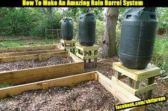 How To Make An Amazing Rain Barrel System - SHTF, Emergency Preparedness, Survival Prepping, Homesteading