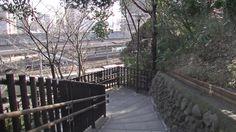#japan#japon#travel