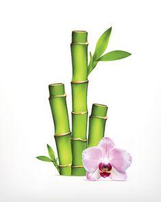 Stem of bamboo with orchid - ilustração de arte em vetor