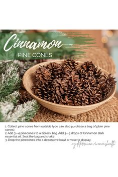 It's so easy to DIY cinnamon-scented pine cones! Just add them to a ziplock bag with Cinnamon Bark oil and shake. I love the aroma of Cinnamon in my home on cool, fall evenings.