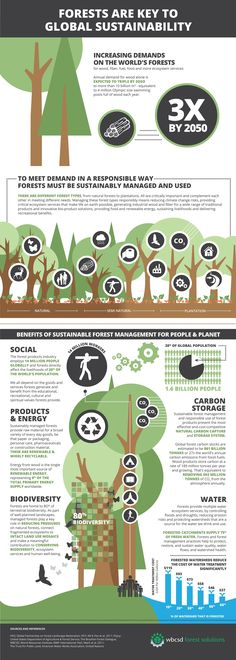 Forests are key to global sustainability-- really fascinating and informative #infographic about the incredible renewable resource of #forests and how many of us depend on them. | Via Global Landscapes Forum