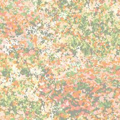 GP5911 WAVERLY GARDEN PARTY - Waverly by York GP5911 Waverly Poppy Field Wallpaper - Sherbert - CanadaDecor Waverly Wallpaper, Paisley Wallpaper, Field Wallpaper, Botanical Wallpaper, Embossed Wallpaper, Brick Wallpaper, Paper Wallpaper, Wallpaper Panels, Wallpaper Roll