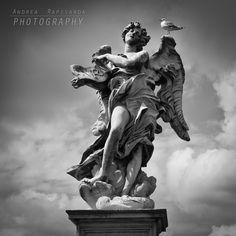 L'angelo ed il gabbiano