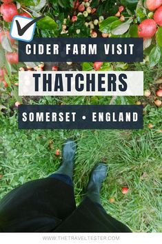 Curious of what goes on on a real cider farm in Somerset? Join The Travel Tester to the orchards, mill and tasting room on a Thatchers Cider Tour! Travel With Kids, Family Travel, Somerset England, Drinking Around The World, Travel Route, Family Days Out, Culture Travel, Day Trips, Trip Planning