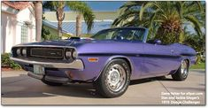 '70 Challenger R/T convertible. Six Pack shaker car in PCP.
