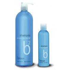B2 Shampoo til afbleget hår