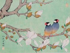 Taiwanese Artist - Java Sparrows