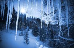 vista del paisaje del invierno a través de los carámbanos de hielo