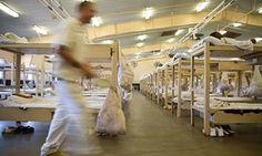 DoJ to investigate Alabama prisons in 'possibly unprecedented' move - October 6, 2016