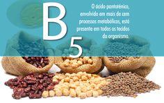alimentos fontes de vitamina b5 - Pesquisa Google