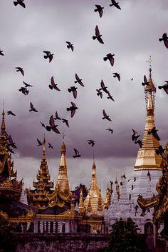 Pigeons above Golden Pagodas, Bago, Myanmar (by Ivars Krutainis).