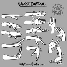 GrizandNorm  Tuesday Tip - Wrist Control An expressive hand gesture can be the exclamation point to a nice pose or gesture. We tend to forget how much mobility can be achieved through the wrist. Here's a reminder of a few different ways the wrist can bend and twist, allowing for even more expressive poses.