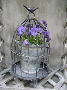 Cloche French style