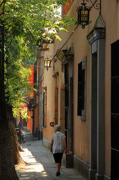 Las callecitas románticas de #Coyoacán, en #MexicoDF. Un sitio para caminarlo y descubrirlo.