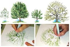 How To Draw Maple & Oak Trees