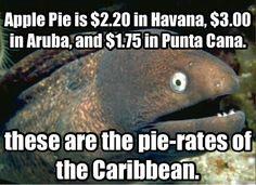 dark humor memes at DuckDuckGo Funny Jokes, Hilarious, Kid Jokes, Stupid Memes, Funny Texts, Dark Jokes, Cheesy Jokes, Lol, Best Funny Pictures