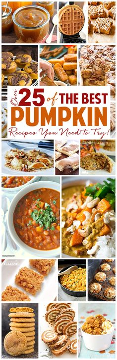 """Over 25 of the BEST pumpkin recipes you need to try this year! Breakfasts, desserts and even dinners to fulfill your """"everything pumpkin"""" needs!"""