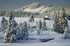"Winter Wonderland - <a href=""http://instagram.com/kilianschoenberger/"">@kilianschoenberger I N S T A G R A M</a>  Bohemian Forest, Czech Republic  <a href=""https://www.facebook.com/pages/Landscape-Photography-by-Kilian-Schoenberger/304631876263547"">L A N D S C A P E   P H O T O G R A P H Y facebook</a>"