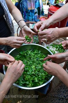Susun Weed - Herbal Medicine: Advice, Articles, Books, Workshops, Intensives, Apprenticeship, Correspondence Courses