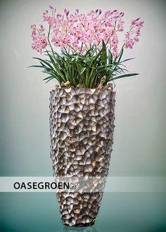 Gepolijste kokosnoot vaas, gevuld met kunst Cymbidium