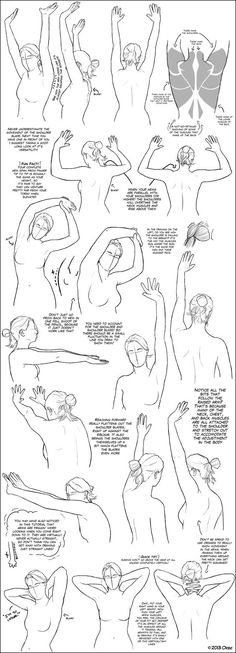 Arms Above the Shoulder/Head Tutorial by ~DerSketchie on deviantART: