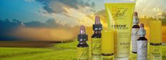 Dr. Edward Bach discovered the Original Bach Flower Remedies which is a system of 38 Flower Remedies that corrects emotional imbalances where negative emotions are replaced with positive.